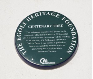 photo - green plaque 3